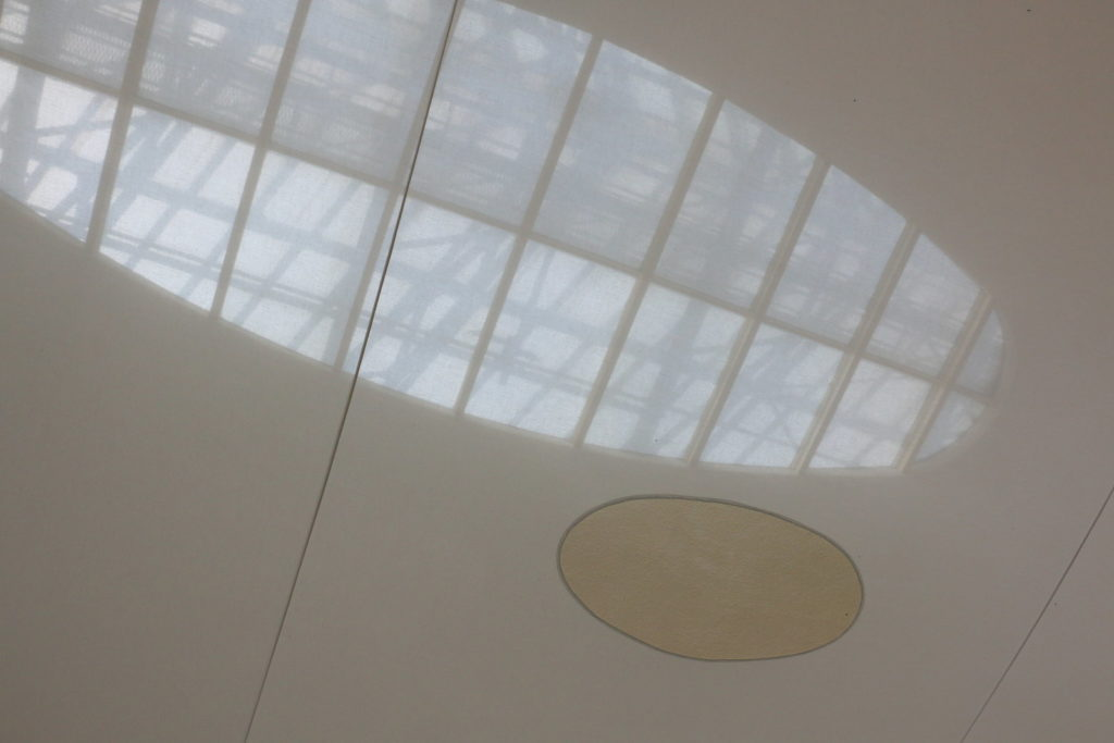 Ceiling In Orangerie Museum in Paris